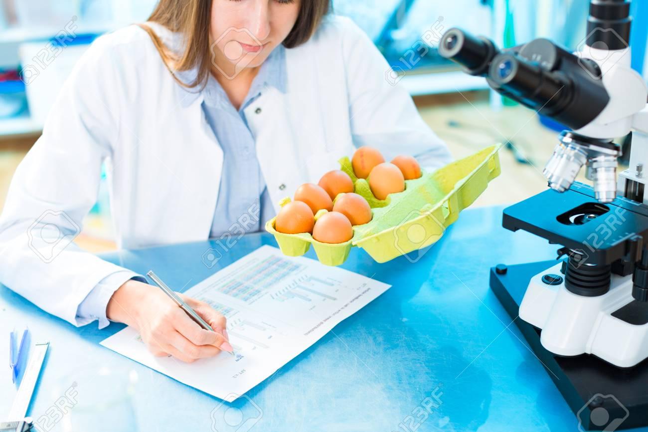 Investigación de productos de huevo. Control de calidad procesamiento de alimentos